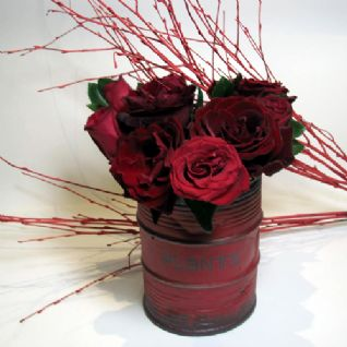 Red roses in a pot / Κόκκινα τριαντάφυλλα μέσα σε ποτ
